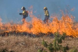Pożar traw to częsty wypadek w rolnictwie